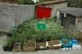 DROGA INCAUTADA POR LA GUARDIA CIVIL (Foto: Archivo El Faro)