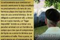 CINE FÓRUM, EN LA FABRIQUILLA DE IDEAS