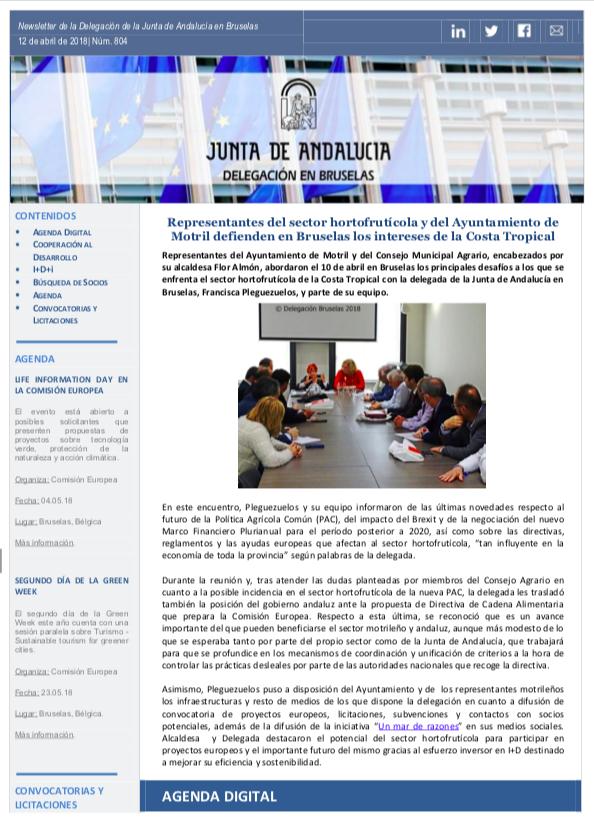 Newsletter Junta en Bruselas