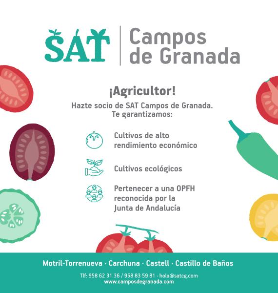 SAT CAMPOS DE GRANADA